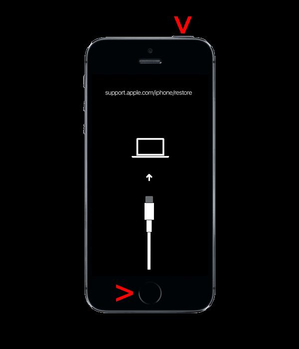 Перезапуск с помощью iTunes без потери данных - 1st Gen (2G), 3G, 3Gs, 4, 4s, 5, 5s, 5c, SE (1-го поколения)