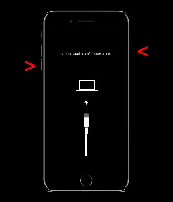 iPhone 7, 7 Plus - Перезапуск с помощью iTunes без потери данных